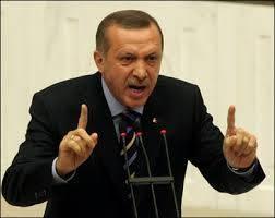 واکنشهای جریانهای سیاسی داخلی ترکیه به خودرایی اردوغان