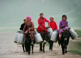 تاجیکستان و بحران کاهش حجم معاملات