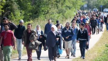 شکسته شدن رکورد تعداد پناهجویان جهان