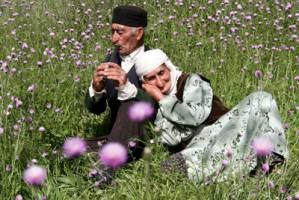سن امید ایرانیان: زنان 80 و مردان 76.5 سال