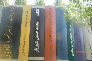 غلطهای املایی فاحش در ماکت کتابهای ورودی کتابخانه ملی
