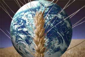 امنیت ملی و مساله ای بنام امنیت غذایی
