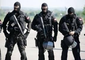 ماموران ویژه ضد ترور آمریکا اطلاع کافی از زبان عربی و گروههای تروریستی ندارند