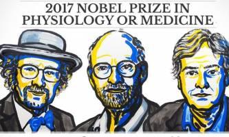 نوبل پزشکی به 3 دانشمند آمریکایی تعلق گرفت