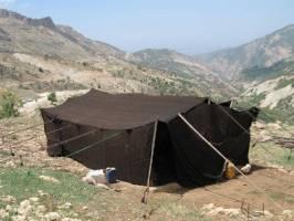 «سیاه چادر» گزینه مناسب برای اسکان زلزله زدگان