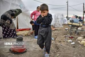 پناه بردن به سِلبریتیها از روی ناچاری