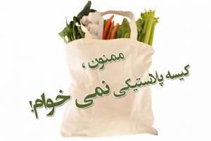 استفاده از کیسه های پلاستیکی کاهش پیدا می کند؟