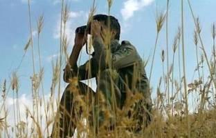 لایحه حمایت از محیطبانان و جنگلبانان تصویب شد