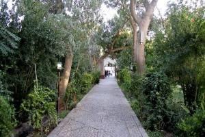 تشخیص و حفظ باغات در کمیسیون ماده ۷ سیستماتیک میشود