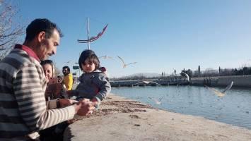 لذت کشف شهر شیراز
