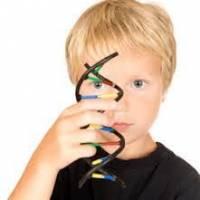 کشف یک جهش ژنتیکی مشترک در روده و مغز افراد مبتلا به اوتیسم