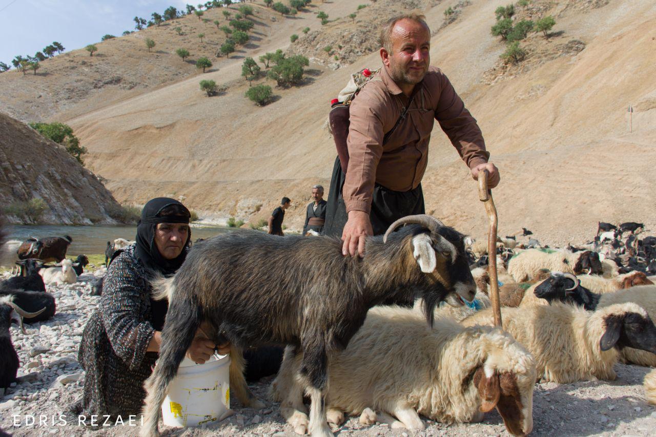 مردم و طبیعت زیبای روستای زیران جوانرود از پشت لنز دوربین