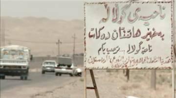 حربه جدید داعشیها: حمله با گاوهای بمب گذاری شده!